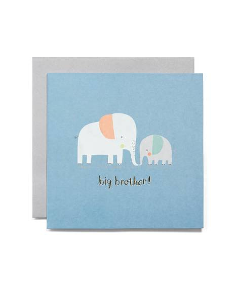 Big Brother Blank Greetings Card